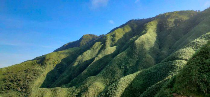 礁溪景點抹茶山